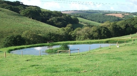 The pond at Liggars Farm campsite, St Keyne, Cornwall